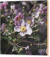 Japanese Windflowers Wood Print