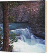 Jasper - Maligne Canyon Wood Print
