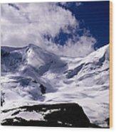 Jasper - Mt. Athabasca  Wood Print