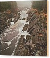 Jay Cooke Under Fog Wood Print