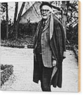 Jean Piaget, Author, 1974 Wood Print by Everett