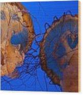 Jelly Roll Wood Print