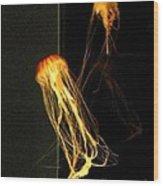 Jellyfish In Dark Wood Print