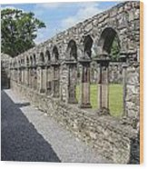 Jerpoint Abbey Arches Wood Print
