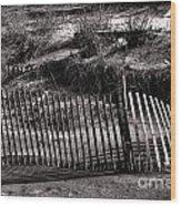 Jersey Shores II Wood Print