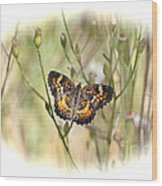 Jewel In The Marsh Wood Print