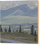 Jogger On The Glenn Highway And Chugach Wood Print