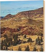 John Day Blue Basin Wood Print