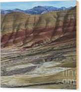 John Day Painted Hills Wood Print