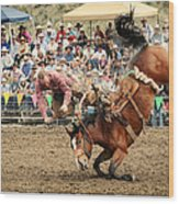 Jordan Valley Arena Action Ranch Bronc 2012 Wood Print