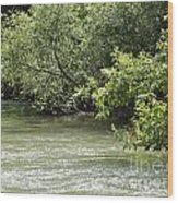Jorden River Banks 04 Wood Print