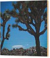 Joshua Tree 1 Wood Print