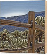 Joshua Tree Cholla Garden Wood Print