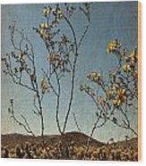 Joshua Tree Park In Bloom Wood Print