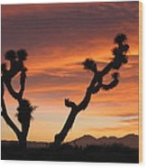 Joshua Trees In The Sunset Wood Print
