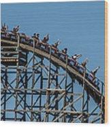 Joy Ride Wood Print by James Bull