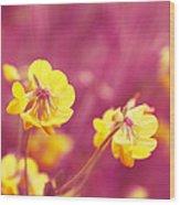 Joyfulness Wood Print