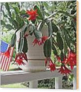 July Cactus With Old Glory Wood Print