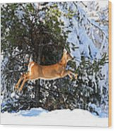 Jumper Wood Print