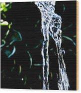 Jumping Water Wood Print