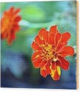 June's Bloom Wood Print