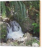 Jungle Falls II Wood Print
