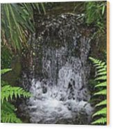 Jungle Falls IIi Wood Print