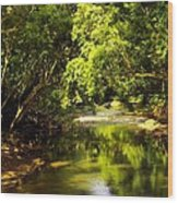Jungle Stream Below The Secret Wood Print