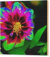 Just Another Regular Flower In The Garden Wood Print