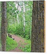 Just Around The Corner Wood Print