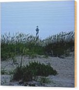 Just Beyond The Sea Oats Wood Print