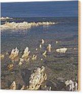 Kaikoura Coast Wood Print