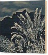 Kalalau Mountains At Night 2 Wood Print