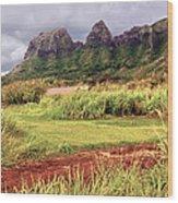 Kalalea Mountain Range Wood Print