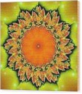 Kaleidoscope IIi Wood Print