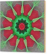 Kaleidoscope Mermaid Wood Print