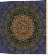 Kaleidoscope Vi Wood Print