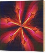 Kaliedoscope Flower 121011 Wood Print by David Lane