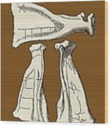 Kalmyk Bone Divination Scapulas, Artwork Wood Print by Sheila Terry