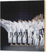 Karate Expert Wood Print