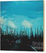 Katrina Trees Wood Print
