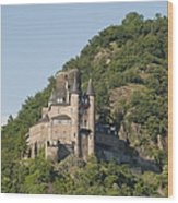 Katz Castle On A Hillside Wood Print