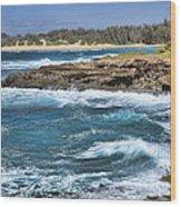 Kauai Beach Wood Print