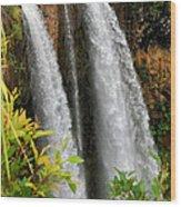 Kauai Waterfall Wood Print