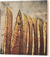 Kayaks Wood Print