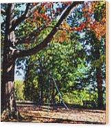 Kellifeer Park Wood Print