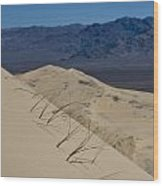 Kelso Dunes Grass Wood Print