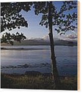 Kenmare Bay, Ring Of Kerry In Bg, Co Wood Print