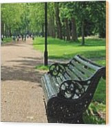 Kensington Park Bench Wood Print