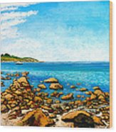 Kettle Cove Wood Print